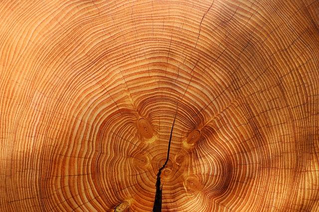 木目の画像