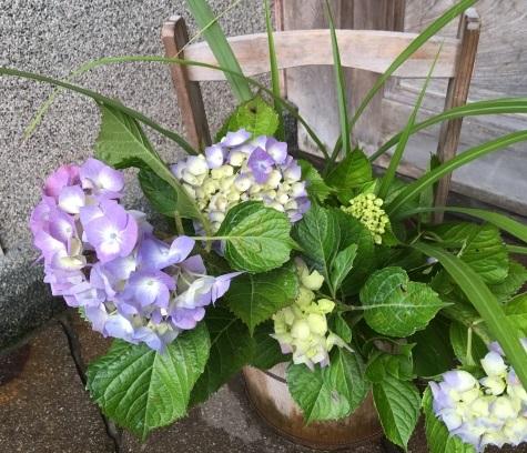 あじさいの生け花の画像
