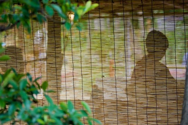 涼しさを演出した夏の茶会の画像