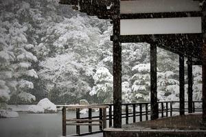 金閣寺に降る雪の画像