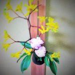 牡丹とカンガルーポーのお花の画像